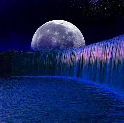 The Sweet, Wise Cosmic Dream (80'spoetry)